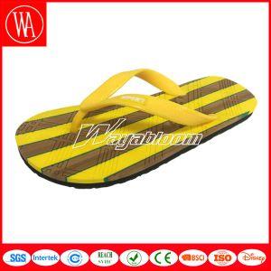 Summer Sandal EVA Flip Flops Leisure Slippers for Women