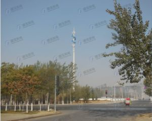 High Quality Carbon Steel Landscape Monopole Tower pictures & photos