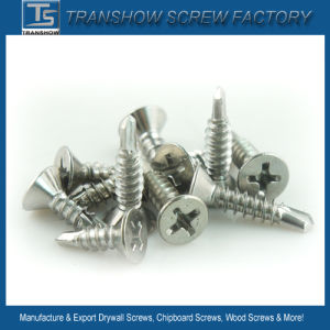 Stainless Steel Self Drilling Screws pictures & photos