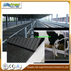 Rubber Matting for Cowshed with Best Price pictures & photos