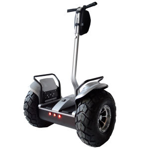 Samsung Lithium Battery Kick Scooter Brushless Motor E-Scooter Mobility Scooter pictures & photos