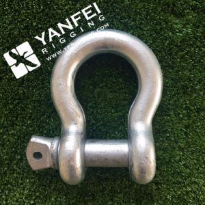 Us Type G209 Anchor Shackle with Screw Pin pictures & photos