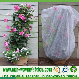 TNT Non Woven Fabric for Agriculture Vegetable Cover pictures & photos