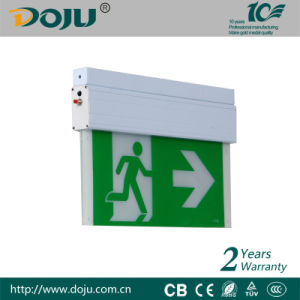DJ-01K LED Emergency exit with CB(ceiling mounted)