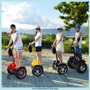 Outdoor Chariot Electric Mobility Scooter (I2) pictures & photos
