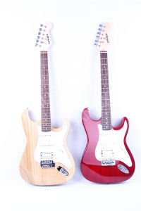 Musical Instruments/ Guitars/ Electric Guitar (FG-202) pictures & photos