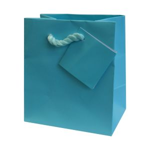 Premium Quality Paper Gift Bags/Party Favor Paper Bags for Birthday Parties Shopping Paper Bag pictures & photos