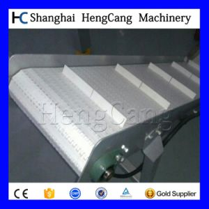 Conveying System with Stainless Steel pictures & photos