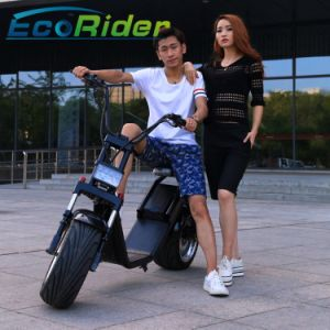Battery Operated Fat Tire 60V 1000W Hub Motor Halley Electric Scooter 35km/H Speed pictures & photos