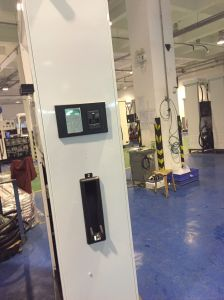 Sanki Fuel Dispenser with Submersible Pump pictures & photos