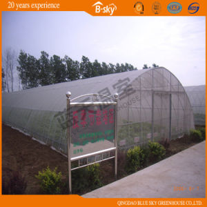 High Cost Performance Tunnel Plastic Film Green House pictures & photos