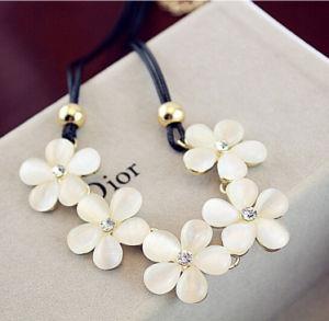 Fashion Beautiful Resin Necklace Jewelry (XL6801)
