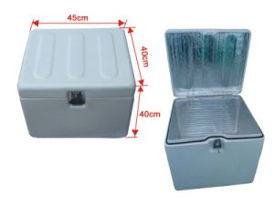 Fiberglass Delivery Box With Insulated Layer