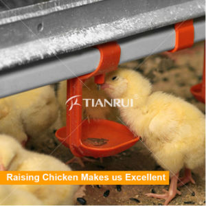 Automatic Poultry Nipple Drinking System For Chicken House pictures & photos