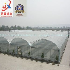 Commercial and Multi-Span Tunnel Greenhouse pictures & photos