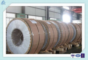 1050 Aluminum Coil for Radiator and Signs