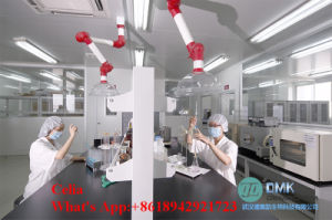 99.5% Purity Triiodothyronine/T3 Powder Effect Uses and Dosage CAS: 55-06-1 pictures & photos