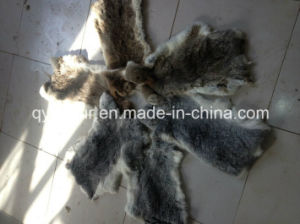 Chinese Factory Wholesale Real Rabbit Skin with Cheap Price pictures & photos