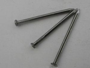 Common Nails Common Iron Nail pictures & photos