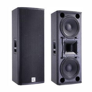 Double 12 Inch Outdoor Big Power PA Speaker pictures & photos