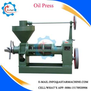 Soybean Automatic Oil Press Machine for Sale pictures & photos