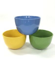 Color Promotion Bowl pictures & photos