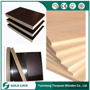 China Cheap Plywood for Construction pictures & photos