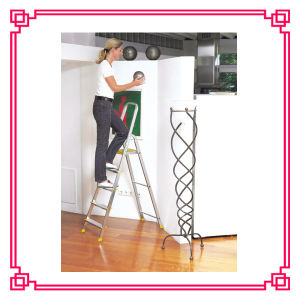 Aluminum 6 Stepshousehold Ladder/Scaffold Platform Ladder pictures & photos