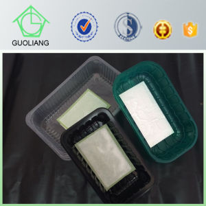 China Manufacturer Supply Biodegradable Frozen Food Packaging Container pictures & photos