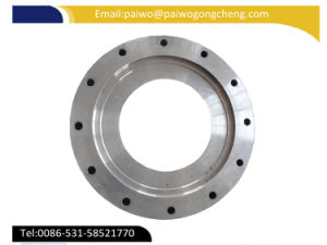 High Precision and High Quality Forged Alloy Steel Flange pictures & photos