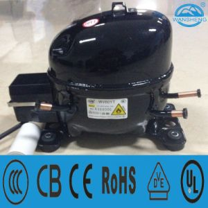 Compact Structure Compressor (WV60YT) R600A Refrigerant with The Crank and Connecting Rod pictures & photos
