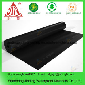 1mm 1.2mm 1.5mm HDPE Geomembrane Liner pictures & photos