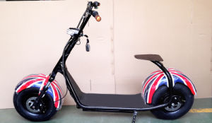 Two Seat 1000W Electric Bike pictures & photos