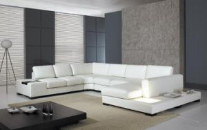 Leather Modern Sofa (S6100)