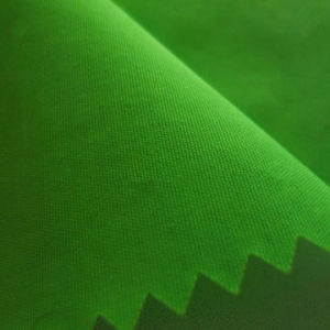 Full Dull Nylon Taslon Jacket Fabric with Coating pictures & photos