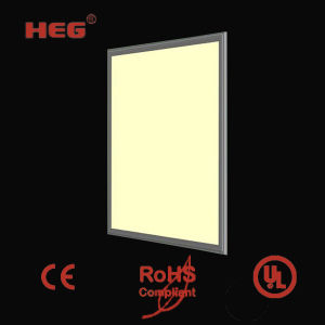 CE&RoHS European Standard LED Panel Lighting/LED Panel Light/LED Panel