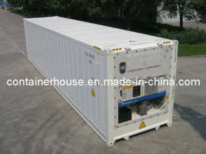 40 Reefer Container pictures & photos
