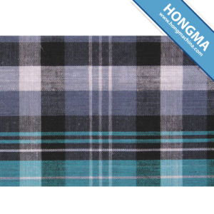 Checked Fabric 1713-0005 pictures & photos
