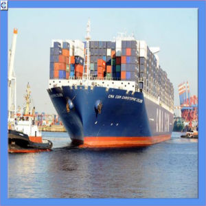 Lowest Sea Freight From to All Over The World (IC0049) pictures & photos