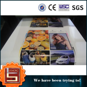 High Speed Printing Machine Chinaplas Products pictures & photos