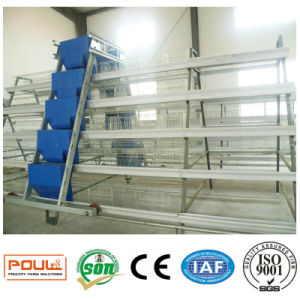 Layer (Egg) Chicken Cages System Equipment for Poultry Farm pictures & photos