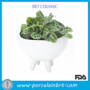 Glossy Elegant Ceramic Porcelain Planter Pot pictures & photos