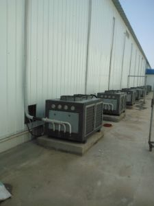 Oyster Mushroom Grow Room Temperature Control Machine pictures & photos