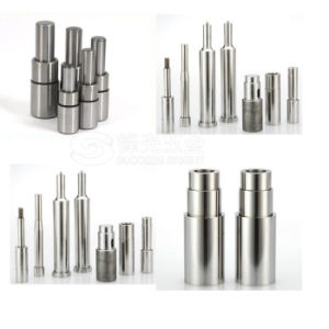HSS Material Punches and Dies for Press Moulds pictures & photos