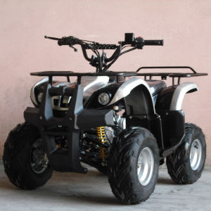 Biggest Saftey Bumper with Front&Back Luggage Rack 110cc ATV Quad (ET-ATV005) pictures & photos