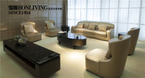 Italian Design Living Room Luxury Nubuck Leather Sofa pictures & photos