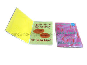 Musical/Recordable Greeting Card (TS-040) pictures & photos