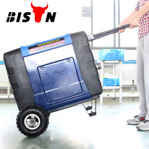 Bison (China) BS-X7000 7kw Electric Start Inveter Generator pictures & photos