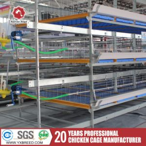 Automatic H-Type Chicken Layer Cage for Broiler pictures & photos