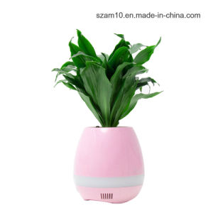 Creative Gift Bluetooth Speaker with Plant Aroma Tablet Removing Odor pictures & photos